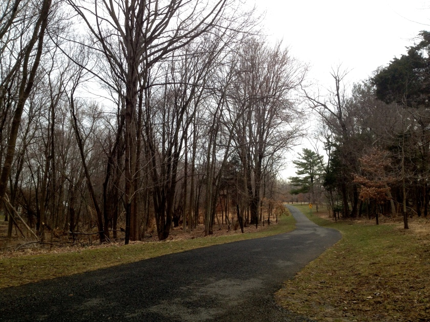 Cloudy morning run on the Matthew Henson Trail in mid-March.