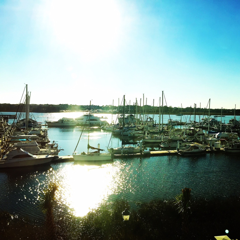 Beautiful view of the Ashley Marina outside of my hotel room in Charleston.