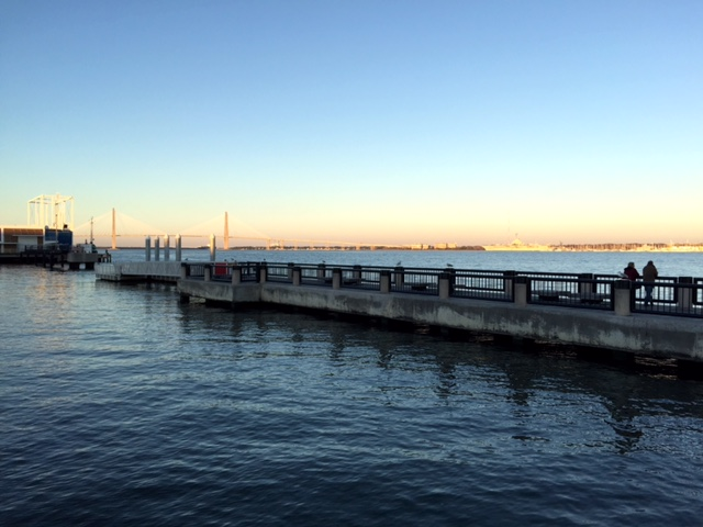 Early evening at the Waterfront Park. So pretty.
