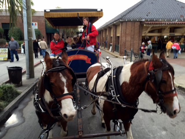 Took a carriage ride through downtown and historic Charleston.