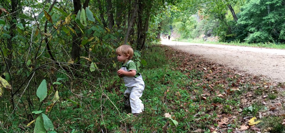 Little guy is exploring — taking the path less traveled.